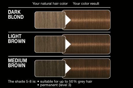 Syoss Color Classic 5 8 Hazelnut Brown German Drugstore