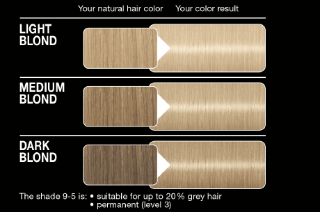 Syoss Color Classic 9 5 Frozen Pearl Blond German Drugstore