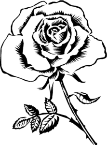 Pretty Rose Coloring Pages At GetColorings Com Free Printable 344x460 More To
