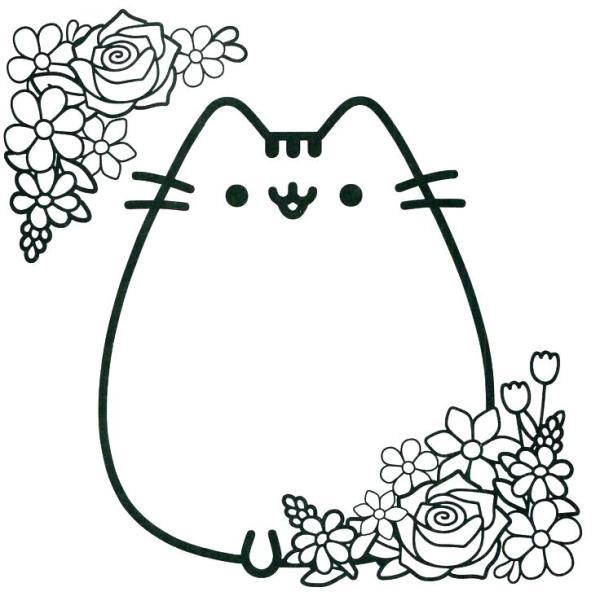 cat color page # 49