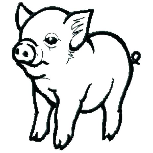 coloring pages of pigs # 25