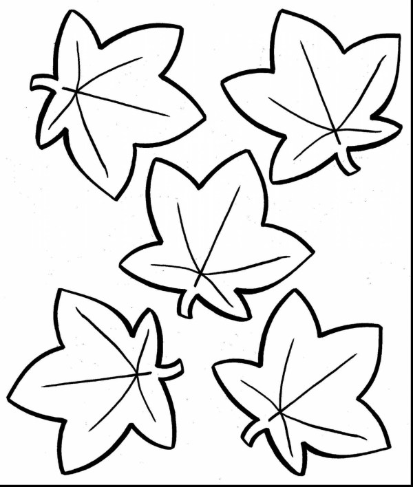 fall leaves coloring page # 53