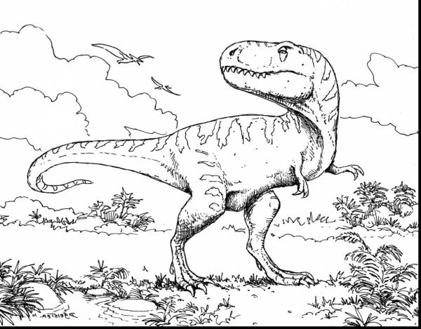trex coloring page # 43