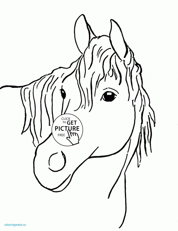 horse head coloring page # 78
