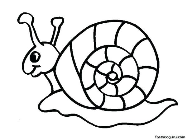 animal coloring pages printable # 26
