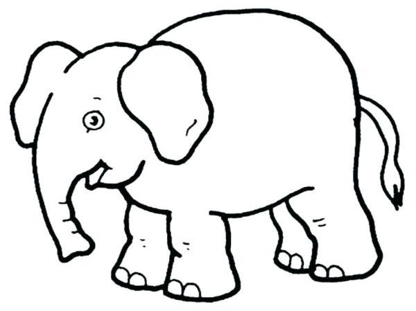 animal coloring # 50