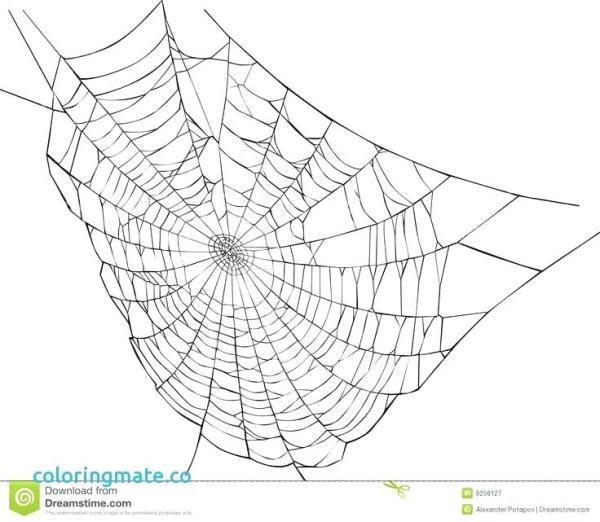 spider web coloring page # 52