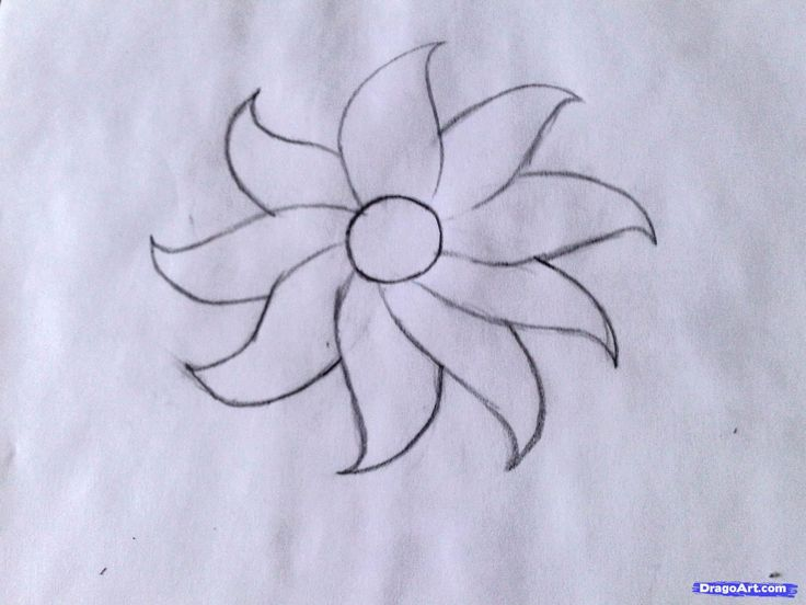 Flower Drawing Simple at GetDrawings com   Free for personal use     736x552 Drawing Simple Flowers  Adorable Flowers For Bullet Journal