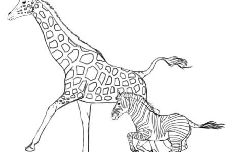 Amazon Com Hippie Animals Coloring Book Is Fun Design Originals Groovy Totally Chill