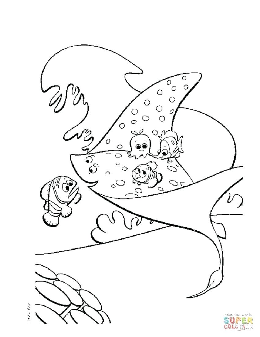 850x1100 coloring stingray coloring page