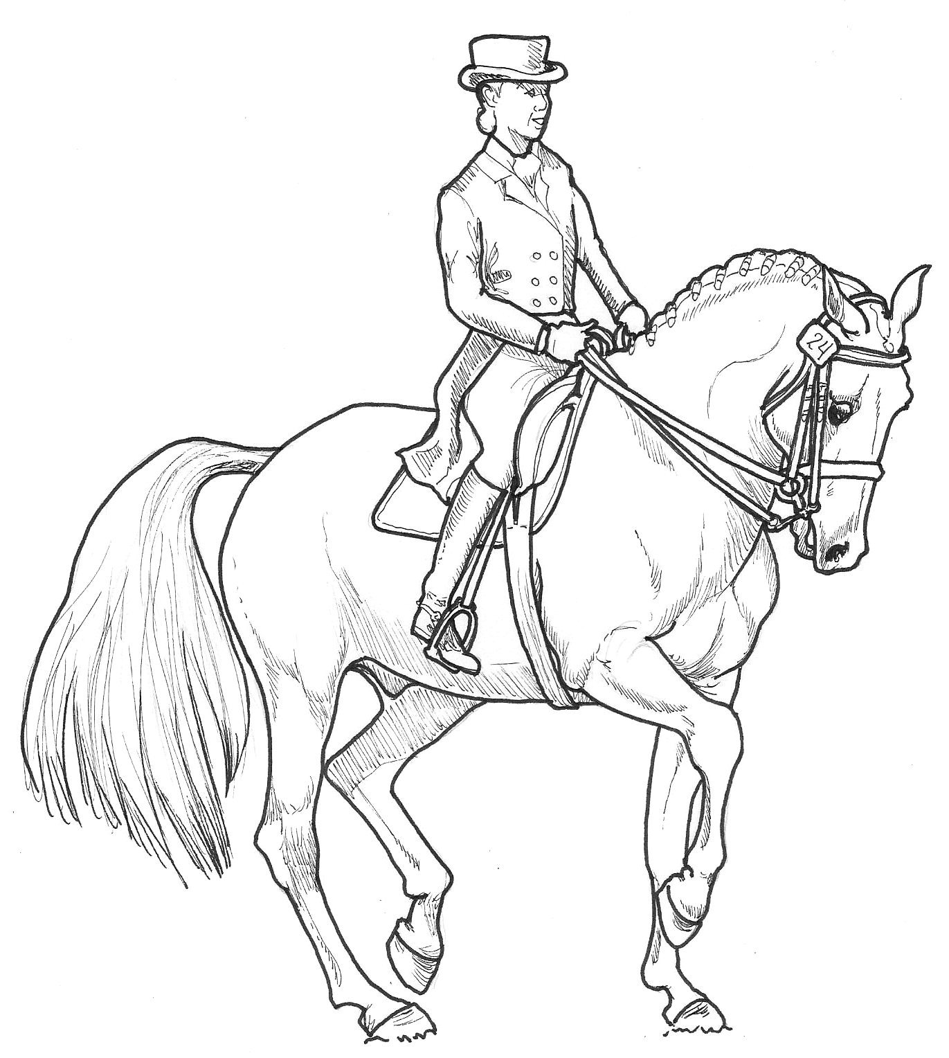 Dressage Horse Line Drawing