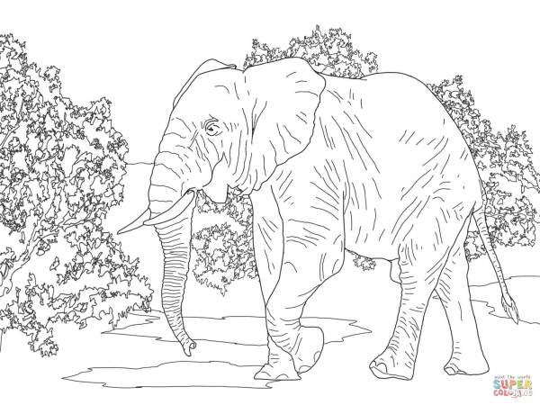 coloring pages of elephants # 49