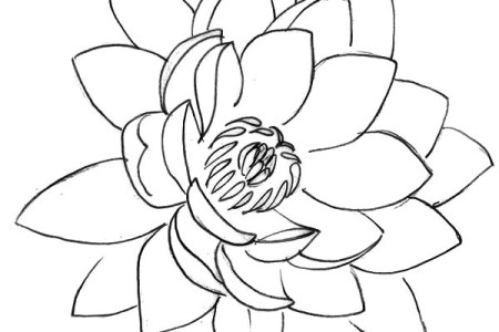 Lotus flower art drawing 4k pictures 4k pictures full hq wallpaper lotus flower drawing isolated icon design stock vector art lotus flower drawing isolated icon design pencil lotus flower by jazz lawrence on deviantart mightylinksfo