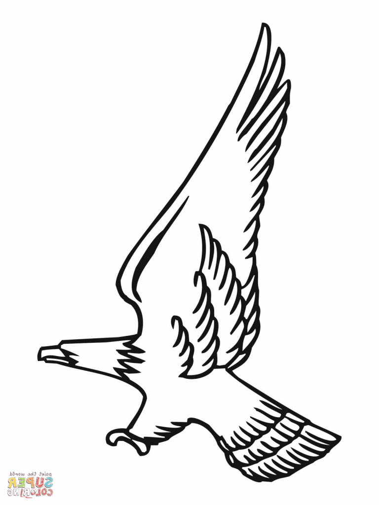 Simple bald eagle drawing at getdrawings free for personal use
