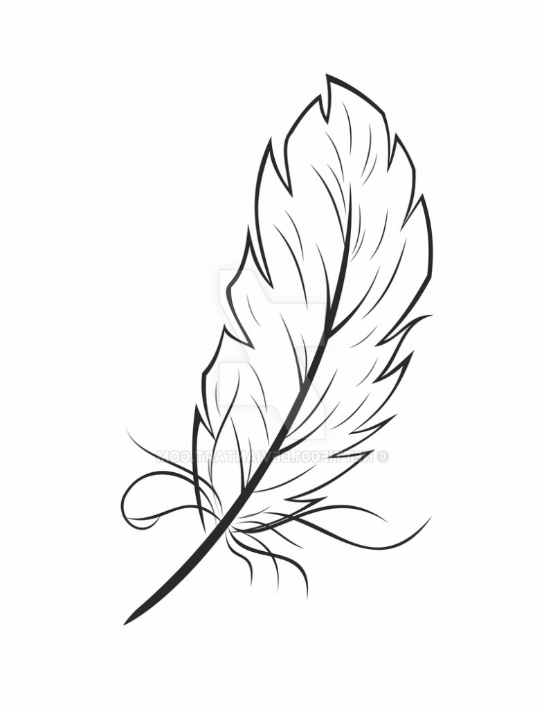 Feathers Sketch Sketches