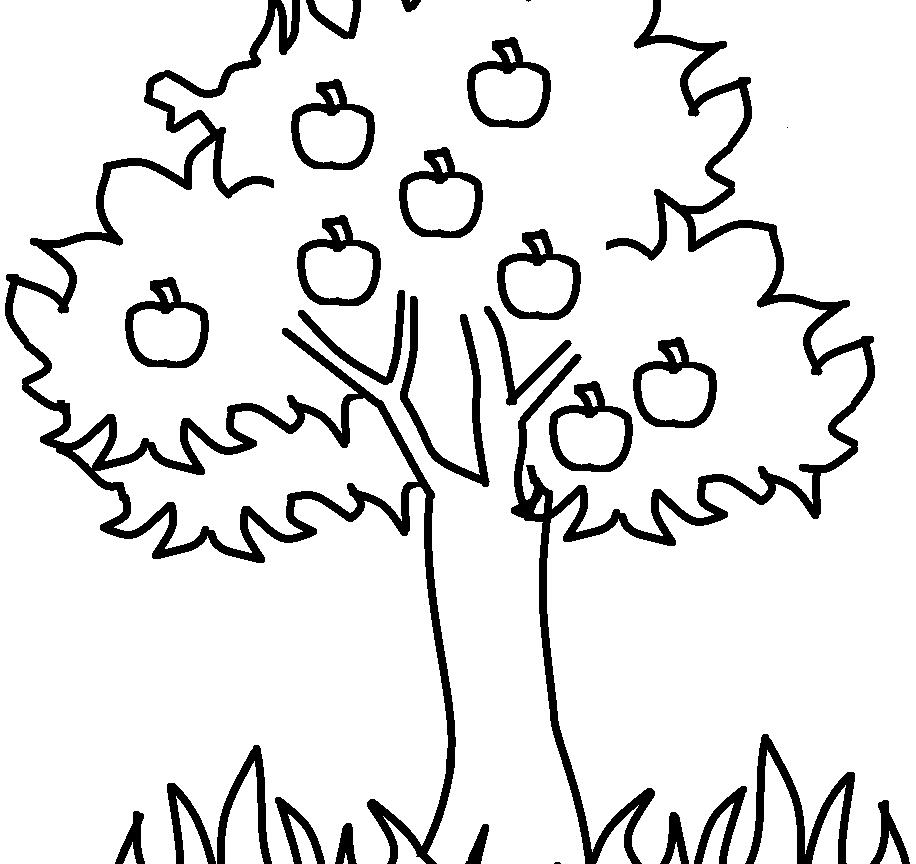 Spring tree drawing