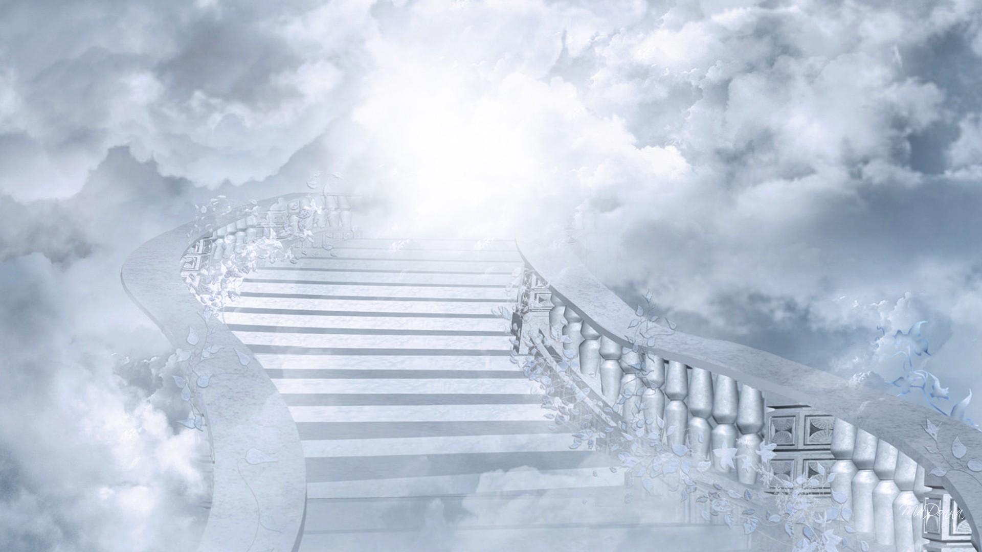Stairway Heaven Flowers