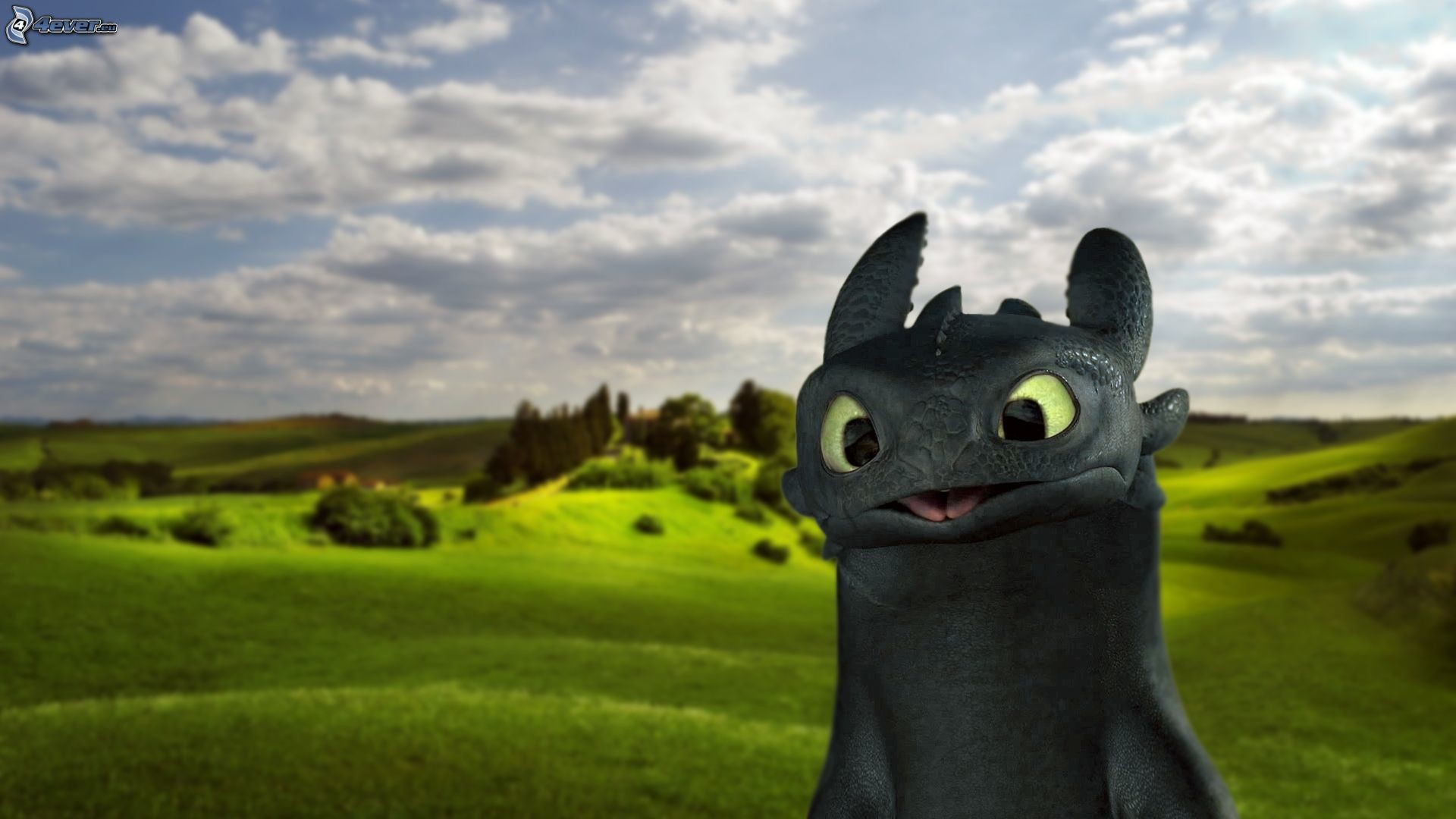 Toothless Hd Night Fury Wallpaper