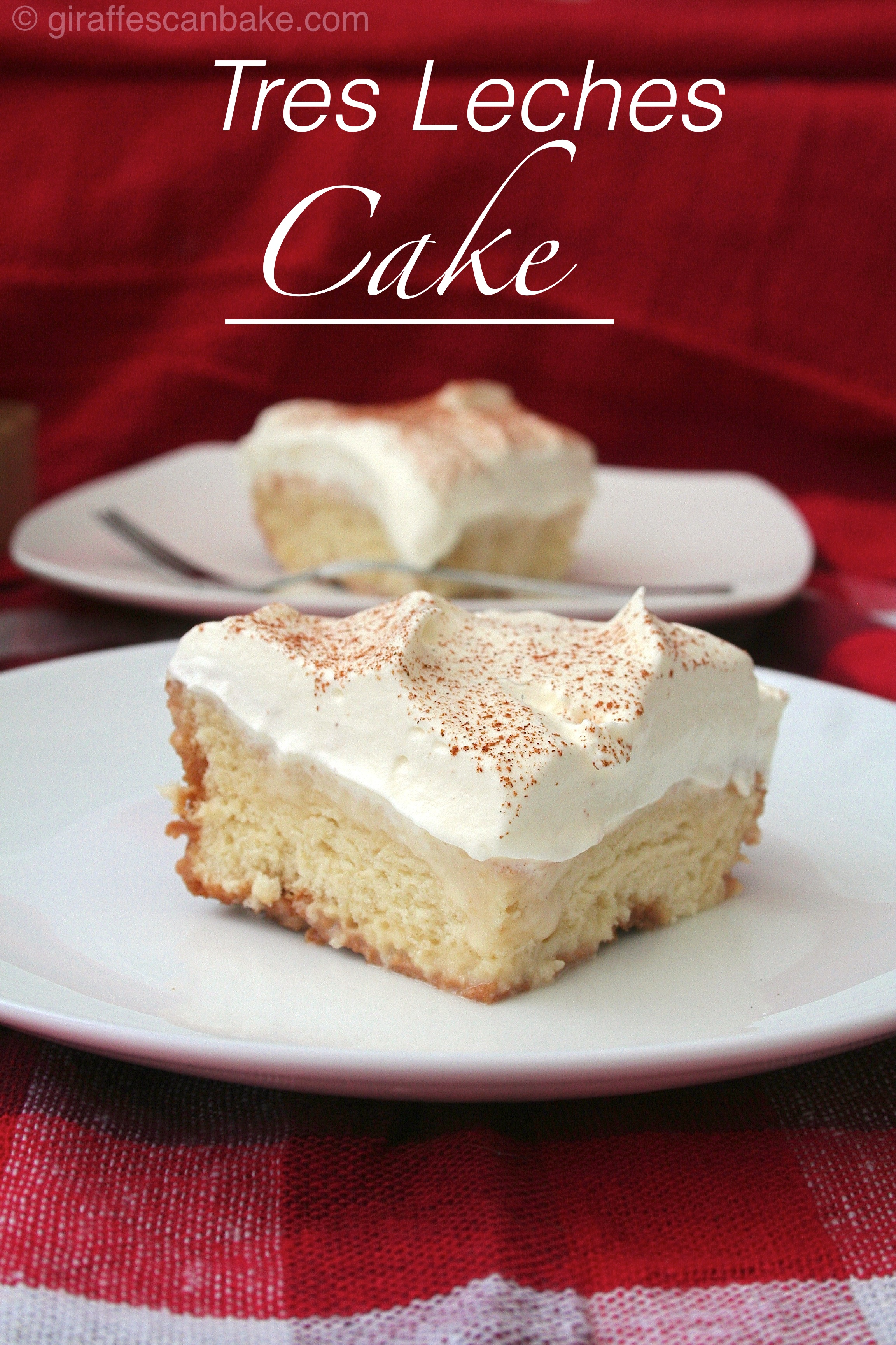 Types Cake Recipes