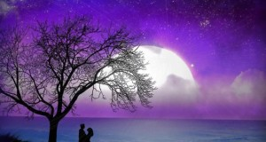 34 Beautiful Rain Wallpapers   Great Inspire Beautiful Romantic Moonlight HD Wallpapers