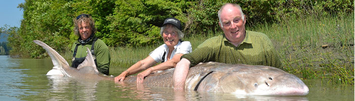 Worlds Largest Catfish Ever Caught Record