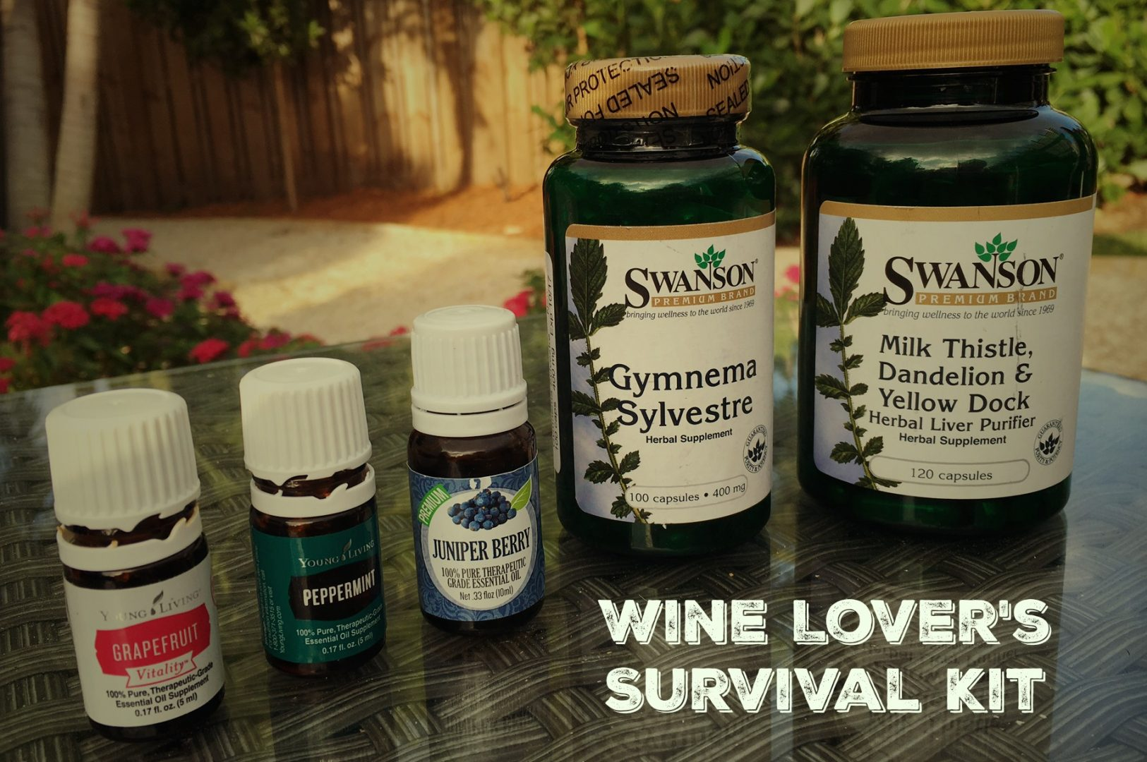 wine lovers survival guide_gymnema for hangovers