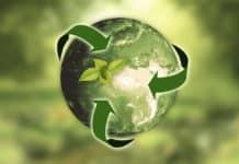 negócio sustentável: opções de franquias