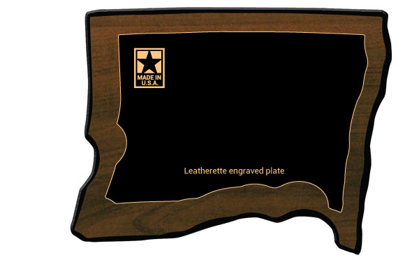 Perpetual Award Picture Frame
