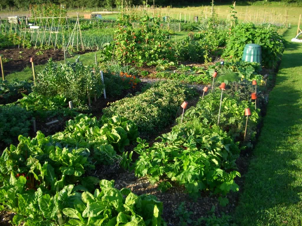 How Much Deciding On Details And Costs In Your Garden