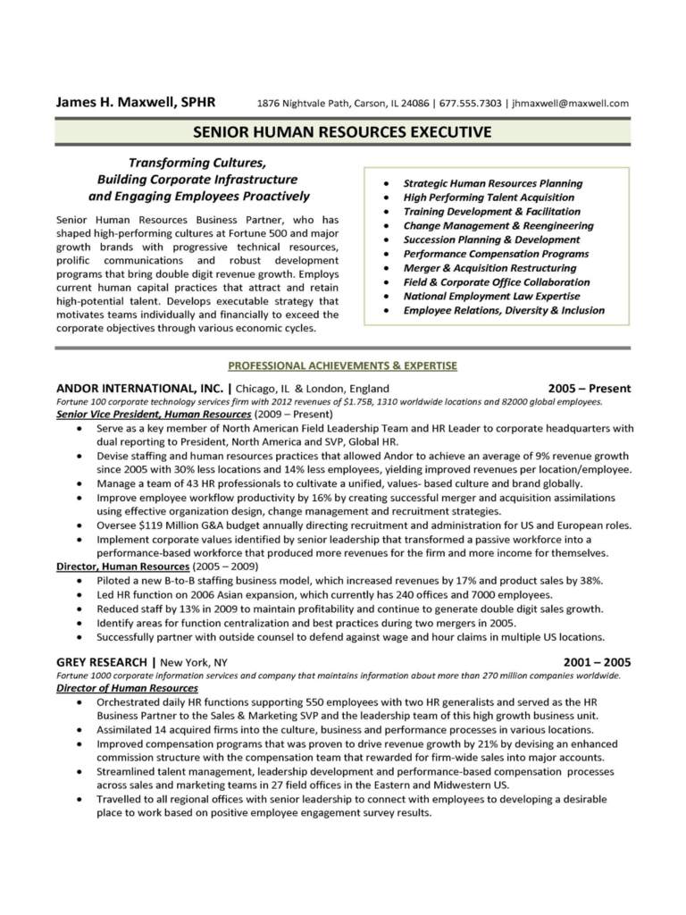 2020 Executive Resume Template Fillable Printable Pdf