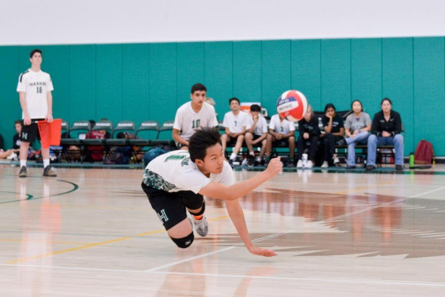 Boys JV volleyball loses to Cupertino High School     Harker Aquila Boys JV volleyball loses to Cupertino High School