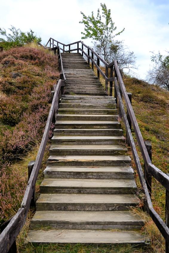 Alte Holztreppe sanieren » So wird's gemacht