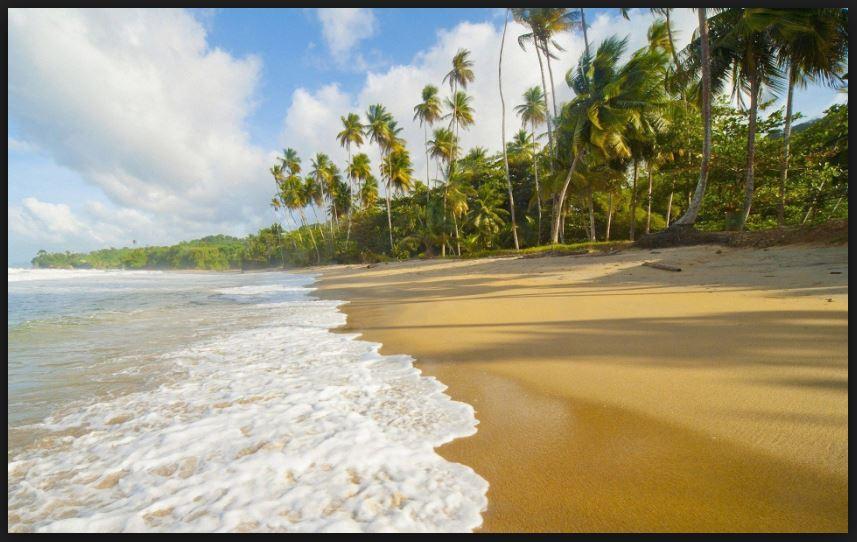Picture Of Nature Seashore Hd Wallpaper