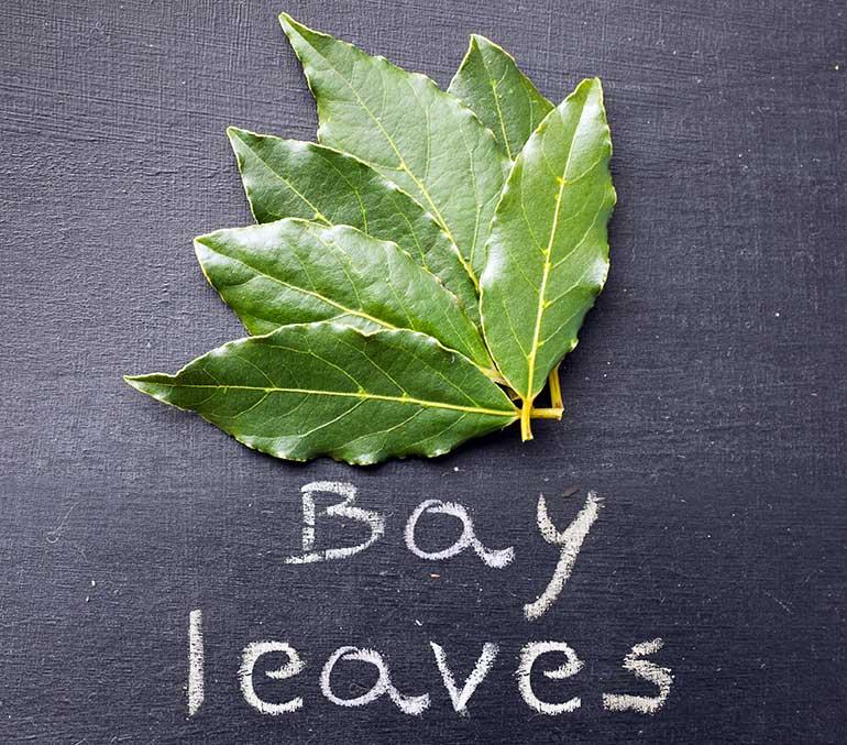 Easy Way Get Leaves