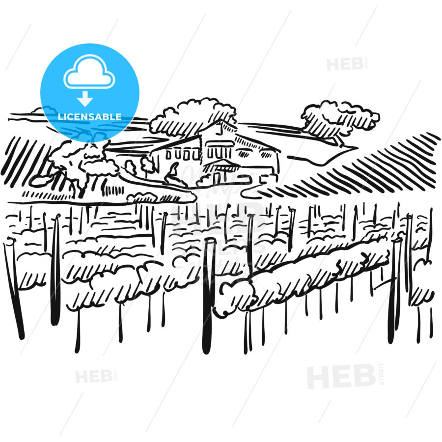 Californian Vineyard with Hills and House - HEBSTREITS