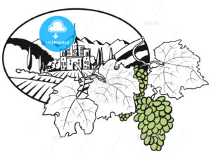 Vineyard Farm Cover Design with colored Grapes - HEBSTREITS
