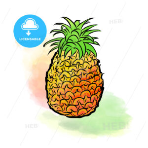 Colored drawing of pineapple - HEBSTREITS