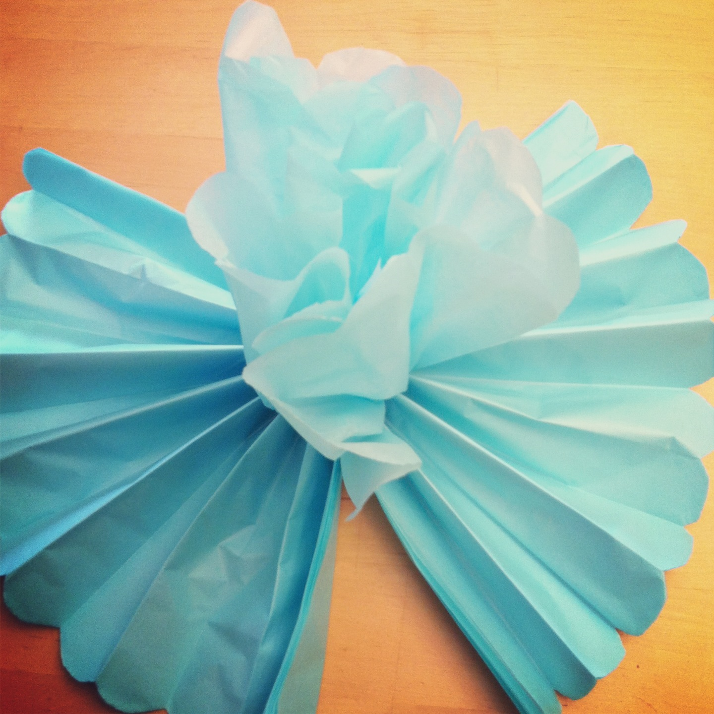 Tutorial  How To Make DIY Giant Tissue Paper Flowers   Hello     DIY Giant Tissue Paper Flowers Tutorial 2 for  1 00 Make Beautiful Birthday  Party Decorations Step 7