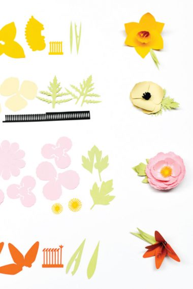 Cricut's 3D Flowers can be a little tough to assemble. Here are detailed instructions on how to assemble the Daffodil, Tiger Lily, Poppy, and Peony.