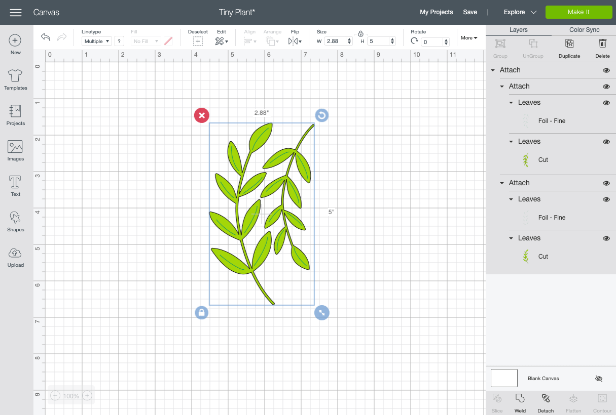 Design Space canvas with foiled plant images