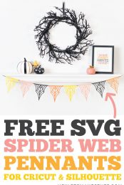 Spider Web Pennants pin image