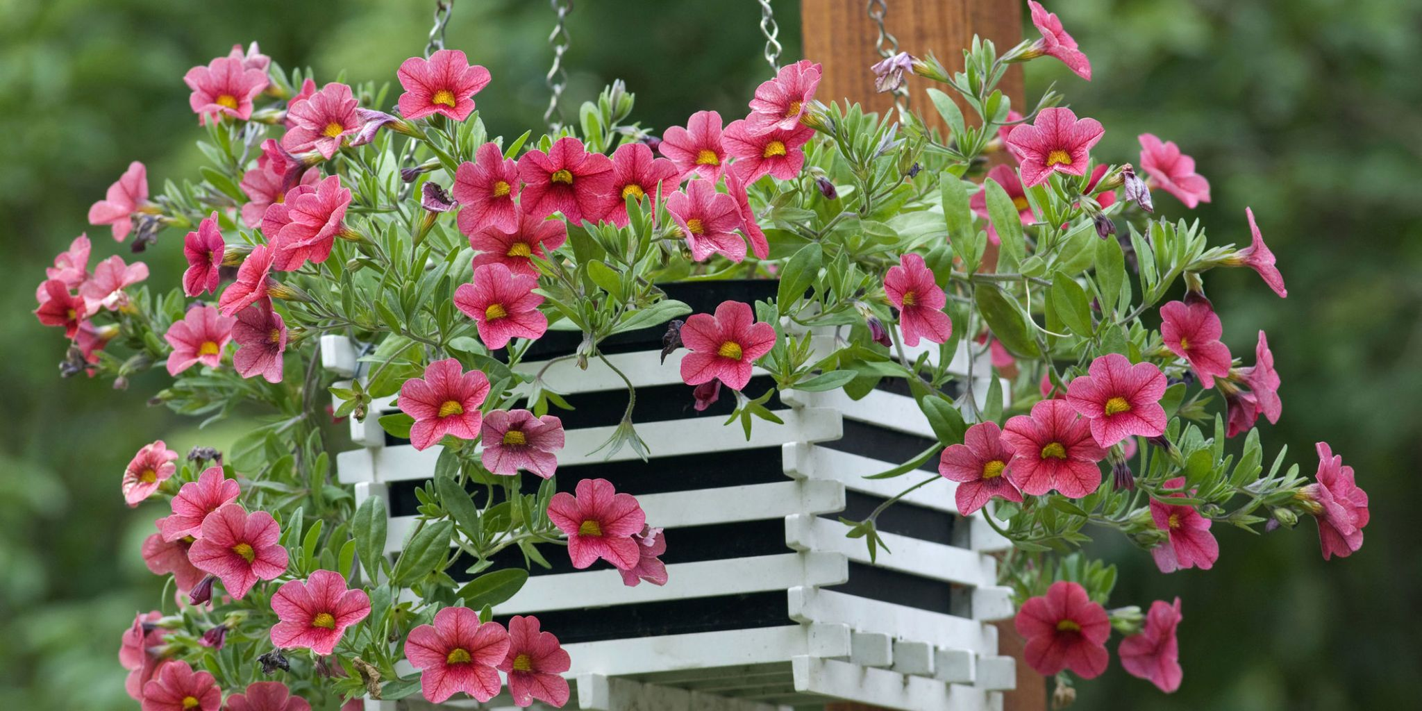 How To Attach Hanging Baskets On A Brick Wall And Fence