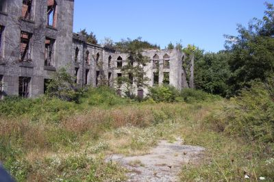 New York Smallpox Hospital- aka 'Renwick Ruin' | history's ...