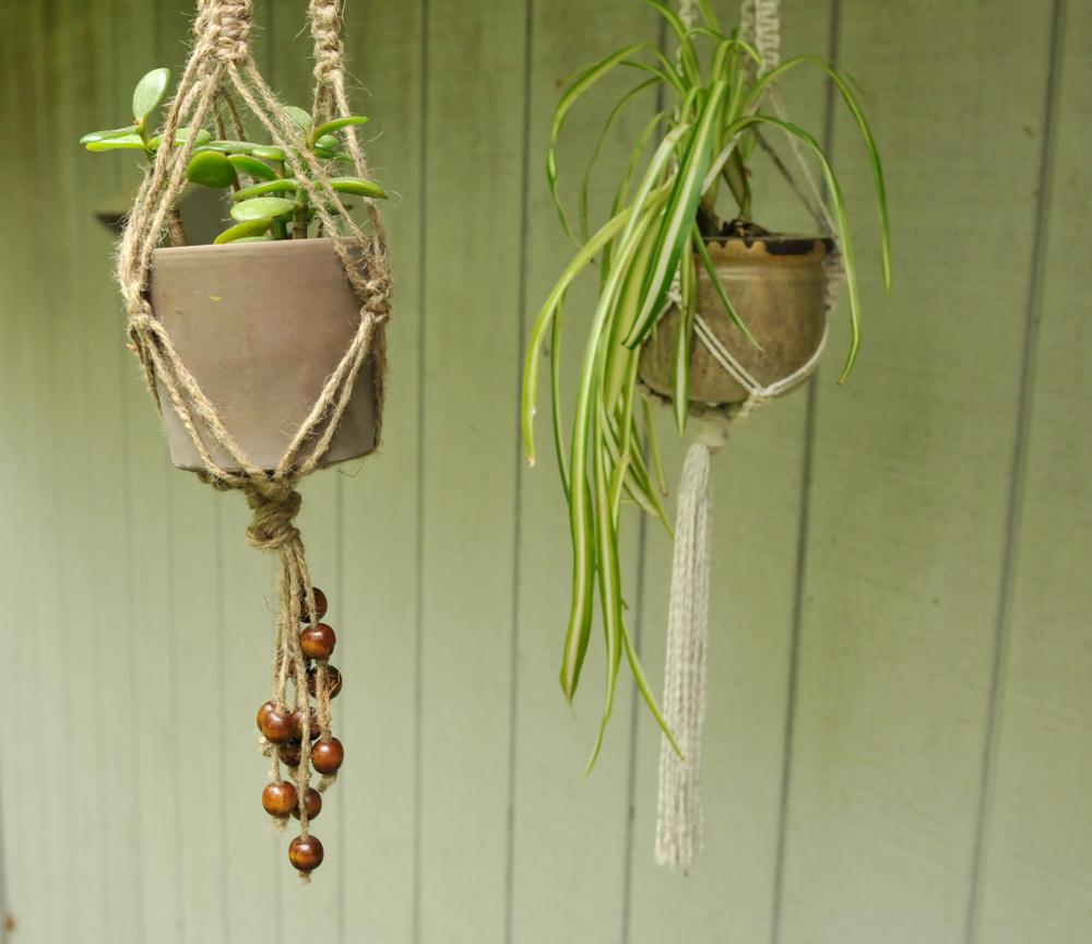 Wall Plant Hanger Indoor