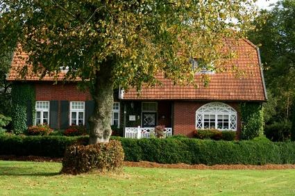 Das Haus - sanieren, renovieren und gestalten