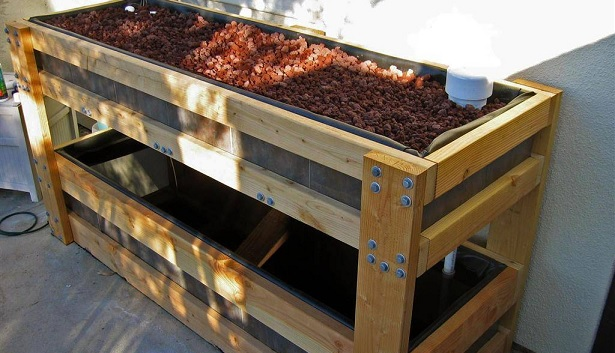 The Starters Guide Aquaponics Plans For Your Own Home