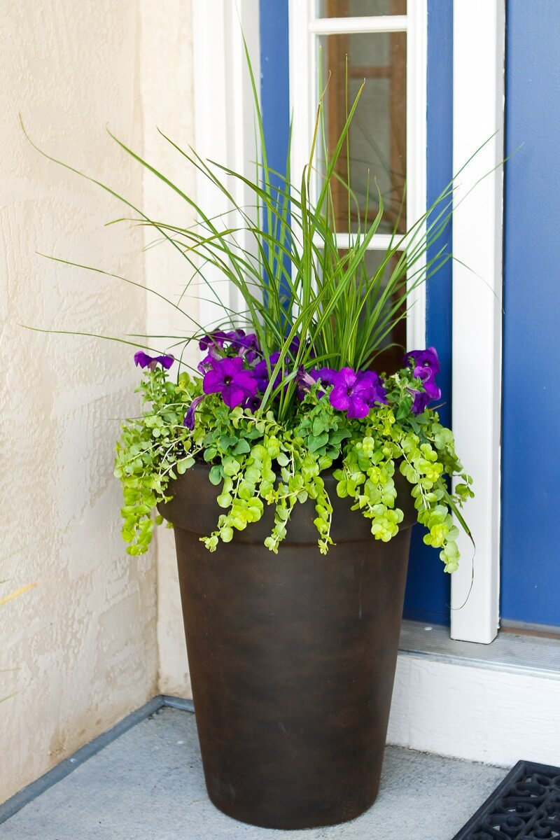 Tall Flower Pot Ideas
