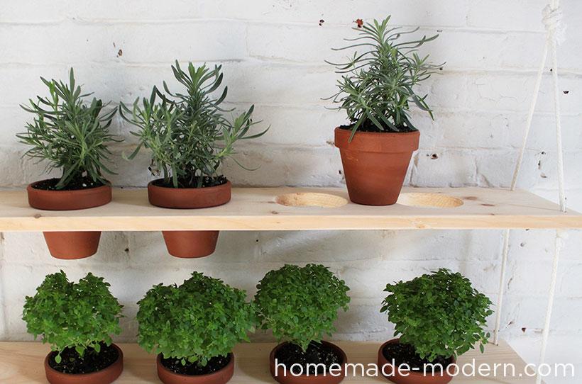 Homemade Modern Ep29 Hanging Garden