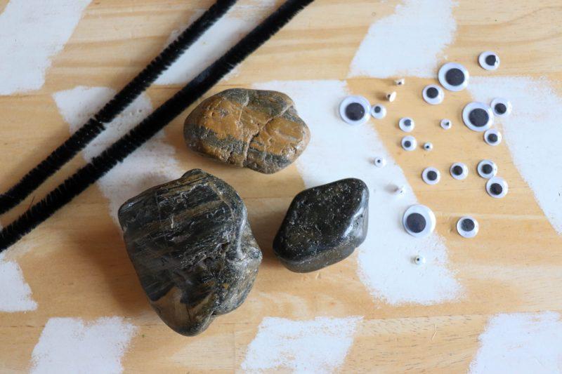 spider rock craft