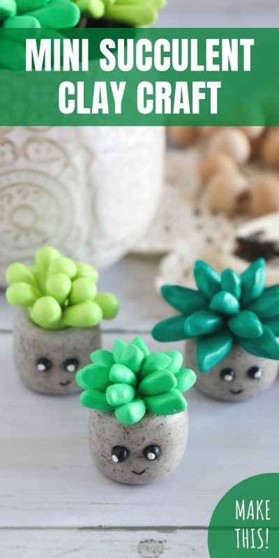mini succulent clay craft